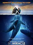 Big Miracle iPad Movie Download