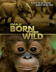 Born to Be Wild iPad Movie Download