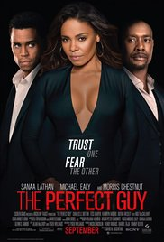 The Perfect Guy iPad Movie Download