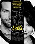 Silver Linings Playbook iPad Movie Download